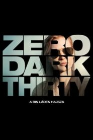 Zero Dark Thirty – A Bin Láden hajsza